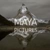 Ivan Friedman - MAYA PICTURES