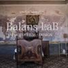 BalansLaB