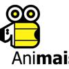 Animais AVPL