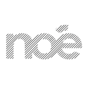 Profile picture for noe from paris
