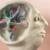 HarvardX Neuroscience