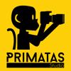 Primatas Studio