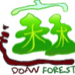 DoAn Forest