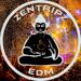 ZentripZ TV