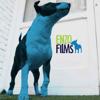 Enzo Films