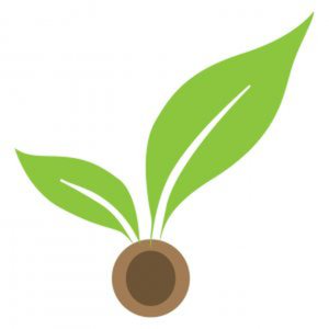 Profile picture for Seedcamp