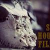Sun House Films