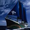 Greenpeace Akdeniz  Hiz.Ltd.