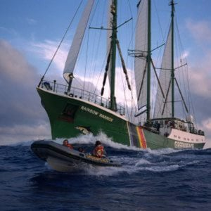 Profile picture for GREENPEACE ITALY