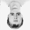 Kirill D