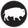 White Buffalo Film Studios