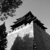Ziyou Li