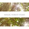 magicforestfilms