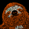 Sloths Against Nuclear State