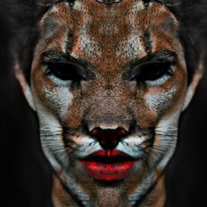 Profile picture for Goitia