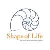 Shape of Life