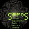 Seeds Festival