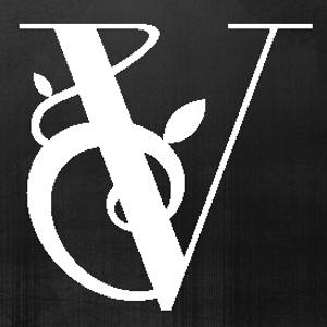 Profile picture for New Vine Media