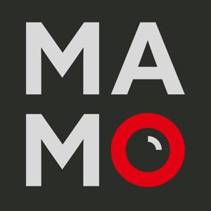 Profile picture for mamo photography