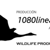 1080 Lineas producciones