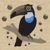 Fizzy Toucan