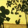 Histoire(s)duCinémaAudiovisuals
