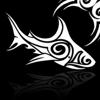 Aqua Surf Productions