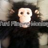 Turd Flinging Monkey