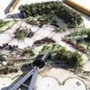 TDGarden-Landscape Visualization