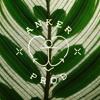 anker prod