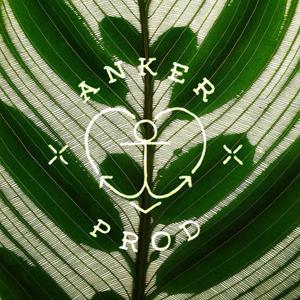 Profile picture for anker prod