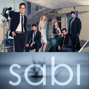 Profile picture for The Sabi Company