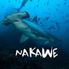 Nakawe Project