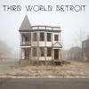 THIRD WORLD DETROIT