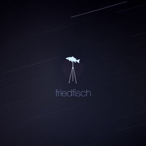 Profile picture for friedfisch filmproduktion