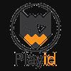 Playid