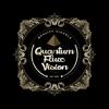 Quantum Flux Vision