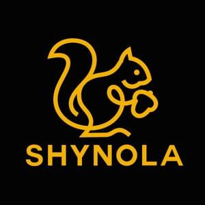 Profile picture for Shynola
