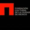 fundacion cultural
