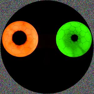 Profile picture for maxr