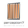 Perception7