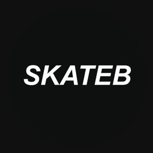 Profile picture for skateb