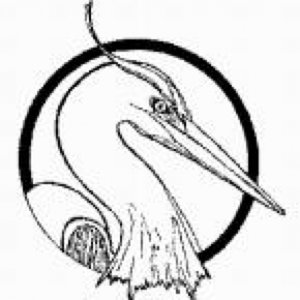Profile picture for Blue Heron