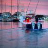 MacDougalls' Cape Cod Marine
