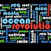 Ocean Revolution