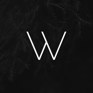 Profile picture for Wilfried J