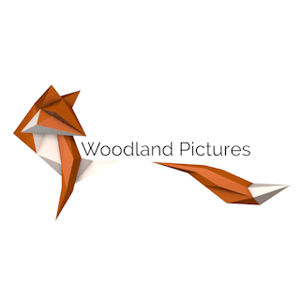 Profile picture for Woodland Pictures