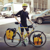 The Guy With The Yellow Bike