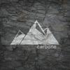 CARBONE COMPANY