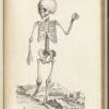 Bones Magazine